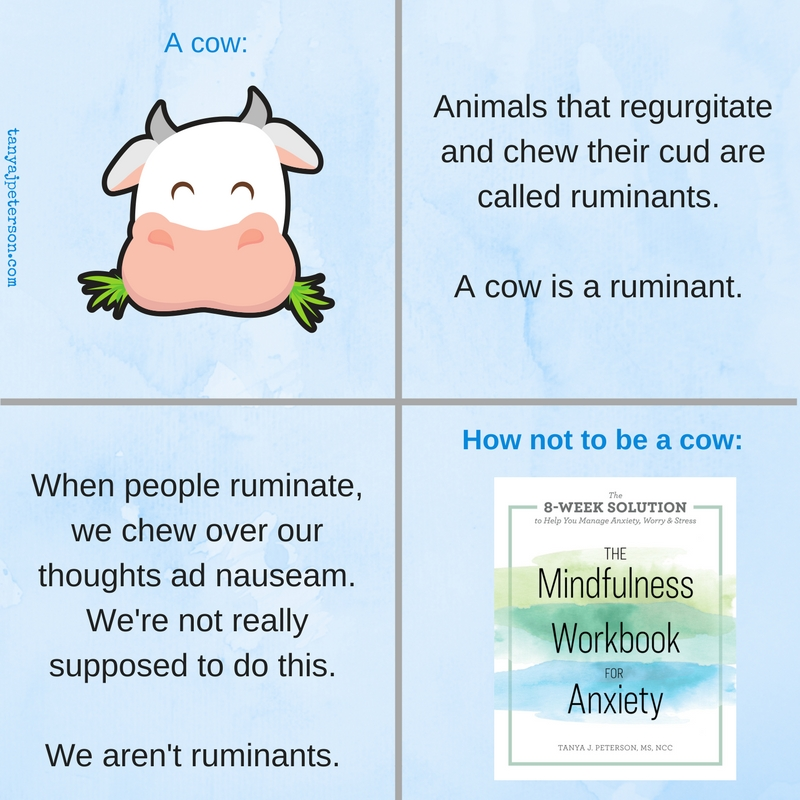 Rumination is a common effect of anxiety. It involves overthinking almost everything. Cows ruminate when they chew their cud, but you aren't a cow.